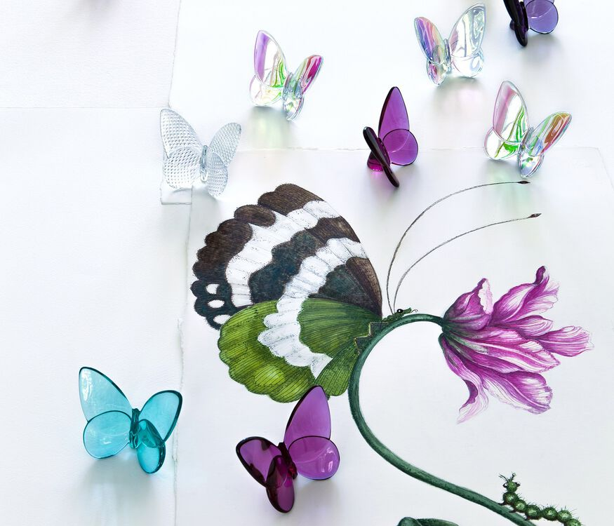 PAPILLON LUCKY BUTTERFLY, Turquoise - 3